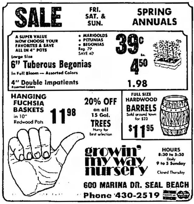 June_10_1977_Growin__039__My_Way_Ad